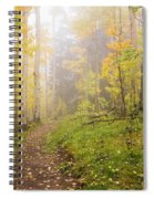 Foggy Winsor Trail Aspens In Autumn 2 - Santa Fe National Forest New Mexico Spiral Notebook