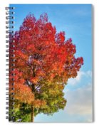 Foliage In Flanders Spiral Notebook