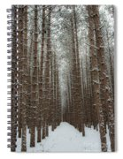 Forest In Sleeping Bear Dunes In January Spiral Notebook