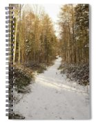 Forest Track In Winter Spiral Notebook