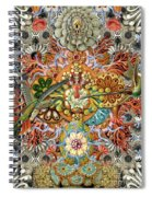 Forms Of Nature #1 Spiral Notebook