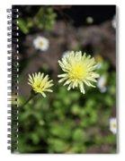 Forum Wild Spiral Notebook
