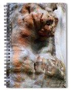 Foster Trees 3 Spiral Notebook