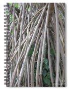 Foster Trees 6 Spiral Notebook
