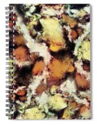 Fractured Viewpoint Spiral Notebook