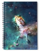 Free Of The Carousel Spiral Notebook
