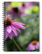 Frilly Hat Echinacea Spiral Notebook