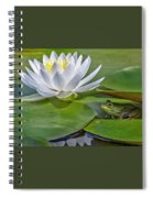 Frog And Lily Spiral Notebook