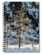 Frost Covered Trees On The Portage Glacier Highway Alaska Spiral Notebook