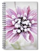 Frost Spiral Notebook