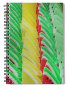 Fruit Jelly Candy Spiral Notebook