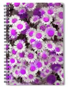 Fuscia Girls Spiral Notebook