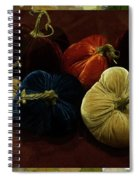 Fuzzy Pumpkins Spiral Notebook