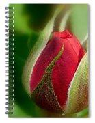 Garden Series - I V Spiral Notebook