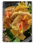Gas Spiral Notebook