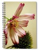 Gentle Gesture Spiral Notebook