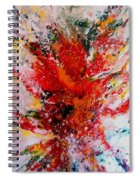 Glory Explosion Spiral Notebook