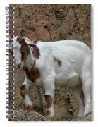 Goat Print 9245 Spiral Notebook