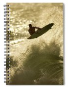 Gold Blast  Spiral Notebook
