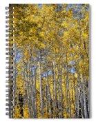 Golden Aspen Grove Spiral Notebook