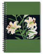 Golden-banded Lily - Digital Remastered Edition Spiral Notebook