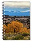 Golden Cottonwoods Spiral Notebook