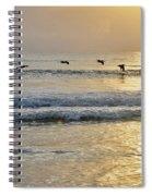 Golden Daybreak Spiral Notebook