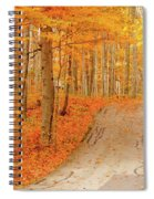 Golden Haven Spiral Notebook
