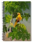 Golden Parakeet In Papaya Tree Spiral Notebook