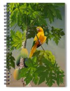 Golden Parakeet In Papaya Tree Spiral Notebook