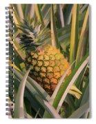 Golden Pineapple Spiral Notebook