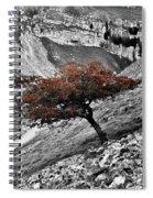 Gordale Scar Tree Spiral Notebook