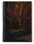 Gorge In The Mountains Of Carrara Spiral Notebook