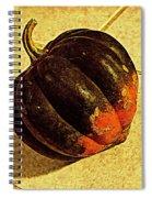 Gourd On Tile Spiral Notebook