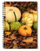 Gourds Grounded Spiral Notebook