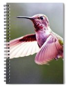 Grace In Motion Spiral Notebook