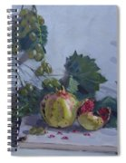 Grapes And Pomegranates Spiral Notebook