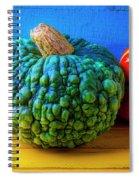 Graphic Autumn Pumpkins And Gourds Spiral Notebook