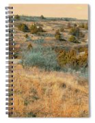 Grassy Ridge Reverie Spiral Notebook