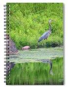Great Blue Heron Fishing Spiral Notebook