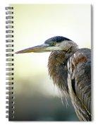 Great Blue Heron Portrait Spiral Notebook