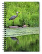 Great Blue Heron Square Spiral Notebook