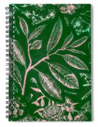 Green Composition Spiral Notebook
