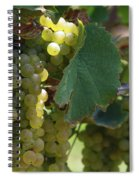 Green Grapes On The Vine 10 Spiral Notebook