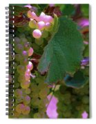 Green Grapes On The Vine 12 Spiral Notebook