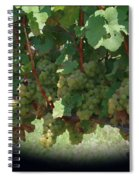 Green Grapes On The Vine 16 Spiral Notebook