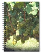Green Grapes On The Vine 17 Spiral Notebook