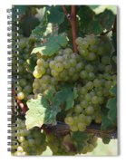 Green Grapes On The Vine 18 Spiral Notebook