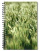 Green Growing Wheat Spiral Notebook