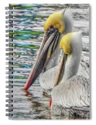 Greeting Party Spiral Notebook